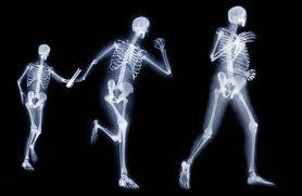 salud de huesos